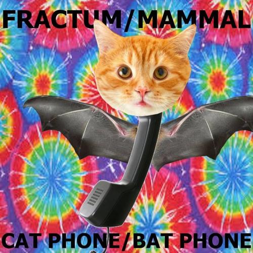 FRACTUM - CAT PHONE