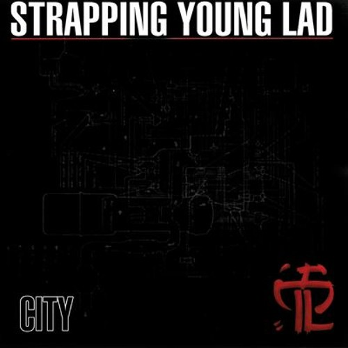STRAPPING YOUNG LAD - Detox