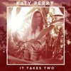 It Takes Two (incomplete)-Katy Perry (cover)
