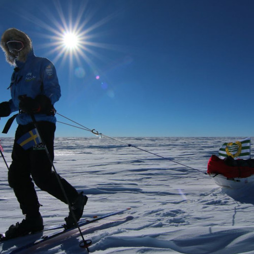 Alex Skarsgard, Team Noom Coach, Updates The Expedition Diary For The Last Time Before The Pole