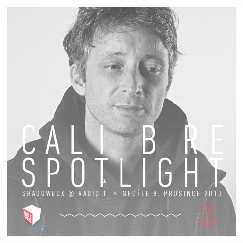 DNBE Presents - Rudeboy - Calibre Spotlight mix