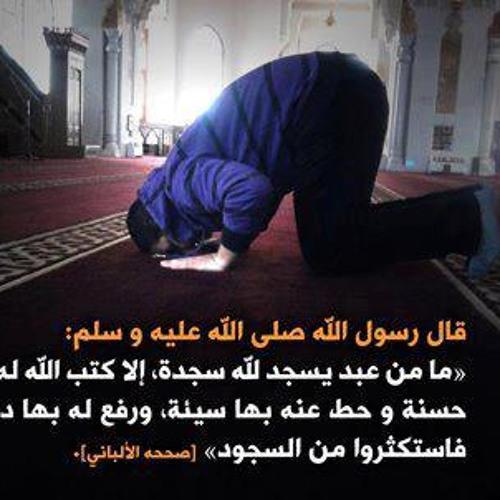 سيدنا ربيعة بن كعب الأسلمي - عمرو خالد
