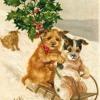 Barking Dogs- Jingle Bells (Peter Gunn  bass remix)
