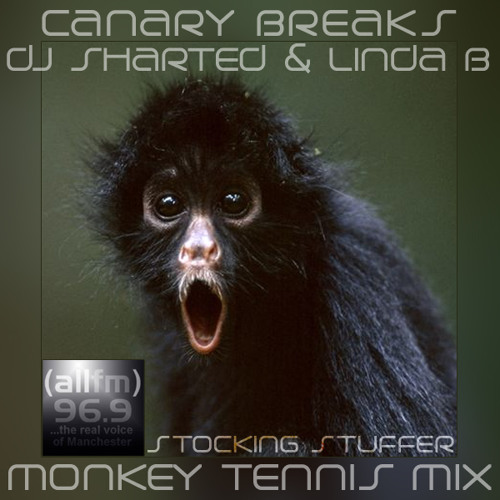 MTG Mix - Canary Breaks - DJ Sharted - Linda B (12-13-13) Stocking Stuffer