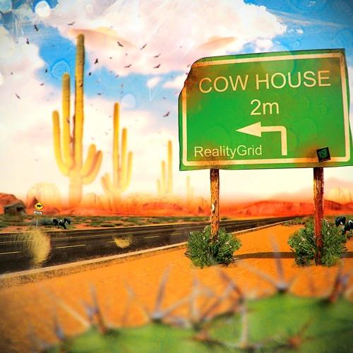 Reality Grid a.k.a EVP - Cow House 2013 (Full Album Mix)