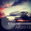2013 #15: RO•ST - Trips Aufgrund Relativer Dimensionen Im Sternenzelt