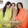 Bhoola Na Yeh Dil - Sajjad Ali - OST Meri Beti - ARY DIGITAL