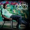 I Can't Wait (Remix by Zayde Alvarado) - Akon ft. T-Pain & Notorious B.I.G.