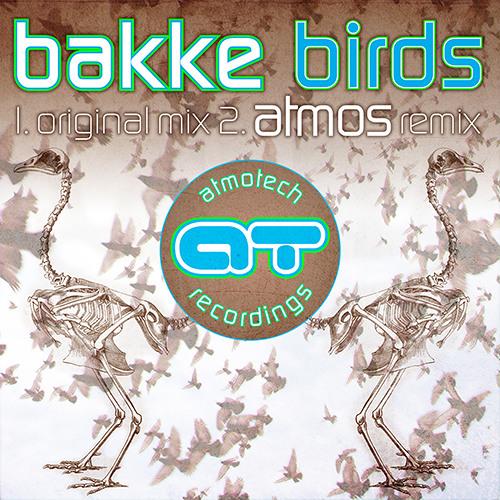 Bakke - Birds (Atmos Remix)