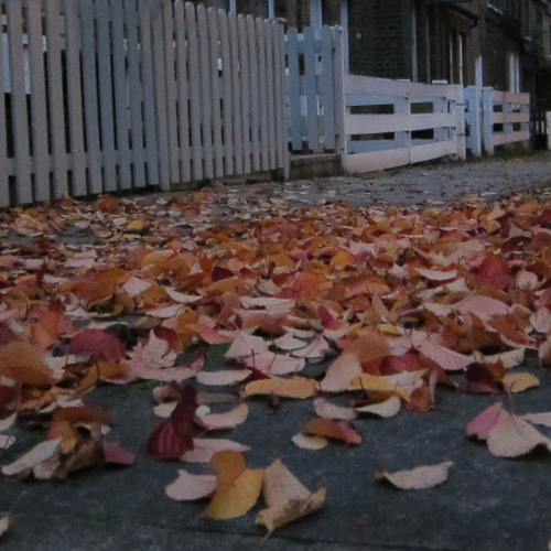 When autumn is over