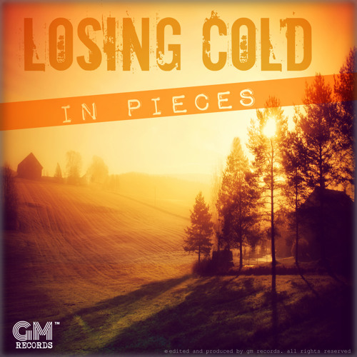 In Pieces - Losing Cold (new song)