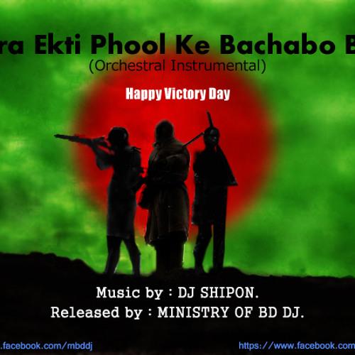 Mora Ekti Phool Ke Bachabo Bole - (Orchestral Instrumental) Shipon Biswas [320 kbps]