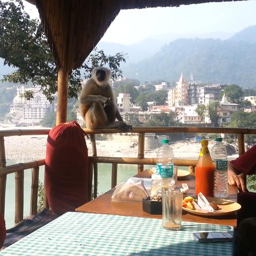 Episode #5 - Yoga Ashram and Diwali in Rishikesh (2013-11-05, part 2)