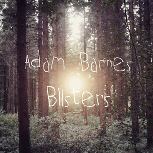 ADAM BARNES - Blisters