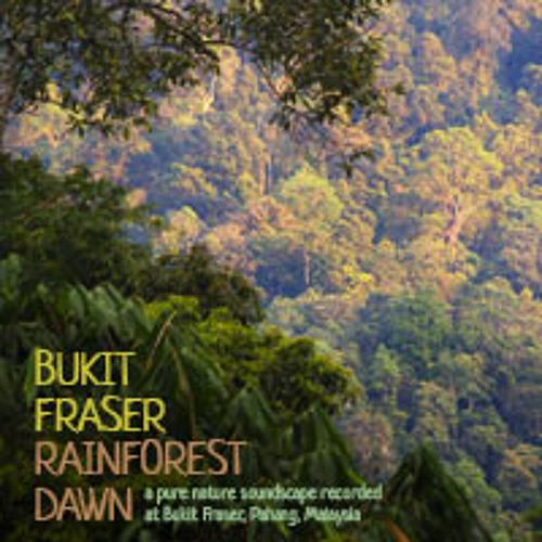 Bukit Fraser: Rainforest Dawn (Album Sample)