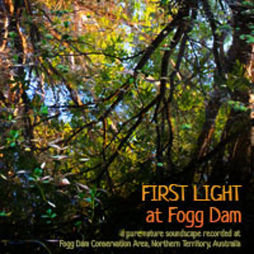 First Light at Fogg Dam