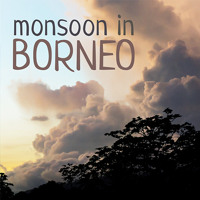 Monsoon in Borneo