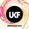UKF Drum & Bass 2013 (Album Megamix)
