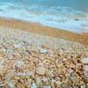 Cosmo Sheldrake & Jana Eidse - I Threw A Rock Into The Sea