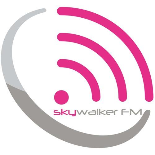 A.N.A.L. @ Skywalker FM -Audioküche Liebe zur Musik- (17.12.2013)