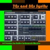 70s and 80s Synths - 64 Massive Sounds
