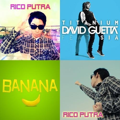 David Guetta feat. Sia - Titanium (Cover by Rico Putra)