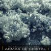 Dirk Maassen with Vla DSound - Armas de Cristal.mp3
