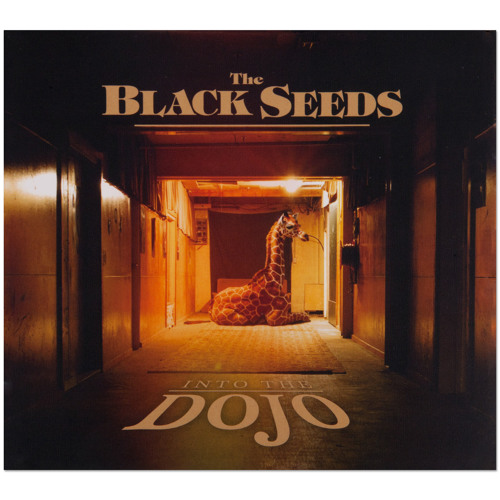 The Black Seeds - The Answer