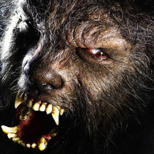 I'm the Big BAD Wolf