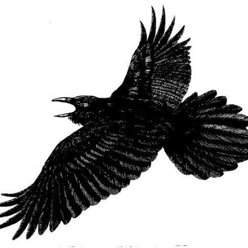 the Raving Raven - Alowishus Devadander Abercrombie and Sammy So So
