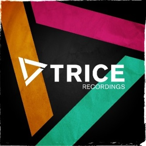 Trice Recordings - Year Mix 2013