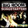 Bigroom Songstaters