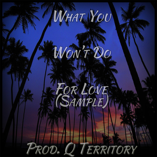 What You Won't Do For Love (Sample)Prod. Q Territory