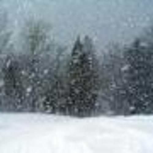 The Snow-Storm By Ralph Waldo Emerson (Diane Havens)