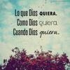 Descansa Mi Amor-El Komander 2013