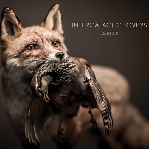 Intergalactic Lovers - Islands (2014)