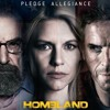 Homeland (TV Series) Season 3 Soundtrack - It All Ends Where It Started (Brody's Execution)