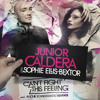 JUNIOR CALDERA Feat Sophie Ellis Bextor - Can't Fight This Feeling (SOUNDSHAKERZ Radio Edit Remix)