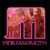 Vivie-Ann (BLOND:ISH) & Philipp Jung (M.A.N.D.Y.) - Pink Mammoth - Burning Man 2013