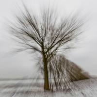Winterrausch [FREE DOWNLOAD]
