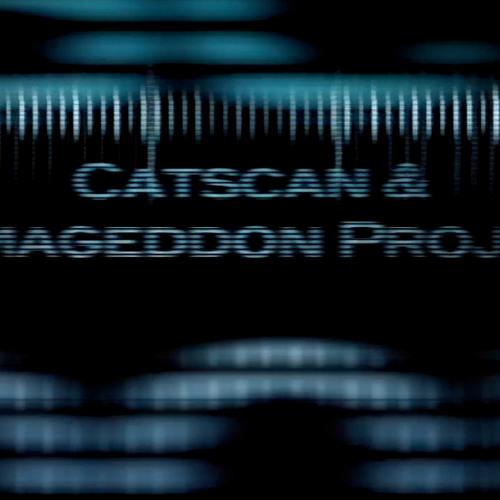 Catscan & Armageddon Project - Wasp (Preview)