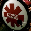 RED HOT CHILI PEPPERS MEDLEY - FUNKY MONKS (Sonido en vivo - Live sound)