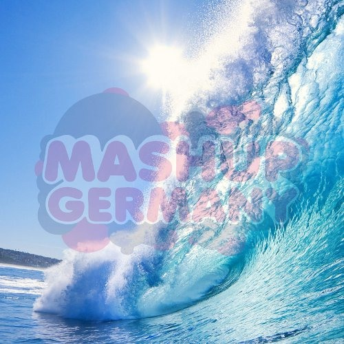 Mashup-Germany vs. DJ Schmolli - Are you gonna change the way of Tsunami (Heads will roll Bootleg)