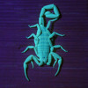 Scorpions & The Many Songs (String Quartet No. 3)