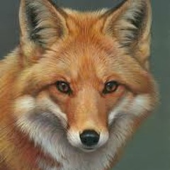 WHAT DOES THE FOX SAY?²