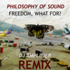 Philosophy Of Sound - Freedom, What For? (DJ Amplifier Remix) **FREE DOWNLOAD