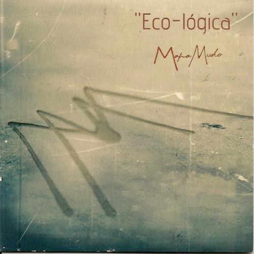 Eco-lógica (2006-2013)