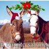105.El Burrito Sabanero - Dj-JesusCitoO FELIZ NAVIDAD
