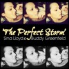 THE PERFECT STORM - (Original Song)