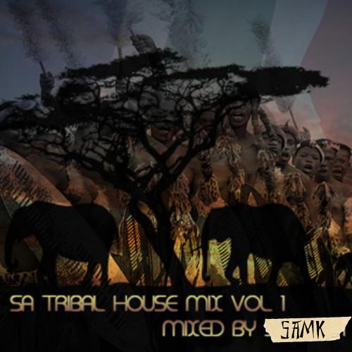 Sa tribal house 2010 by sam k listen to music for Tribal house tracks